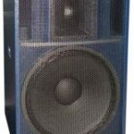 Биамп активная широкополосная акустическая система CS-415 P2