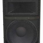Активная акустическая система KL Acoustics  (Park Audio) DELTA3212-P