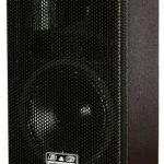 Двухполосная акустическая система FT 0821